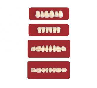 Акриловые зубы Unicryl боковые верхние форма 11 цвет D4 8шт