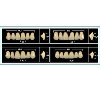 Зубы Yeti фронтальные верхние, цвет B1, 6 шт